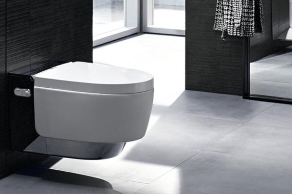 Das WC – ein Sinnbild guter Hygiene
