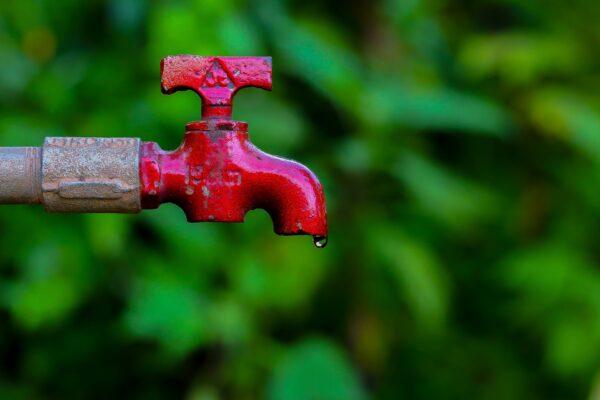 Wasser sparen ohne Komfortverzicht